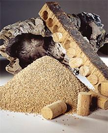 View: raw cork